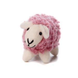 Coloured Sheep Decoration