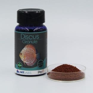 NT LABS Pro-f Discus Granule 45g