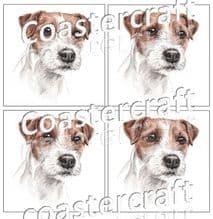 Jack Russell (Parsons )