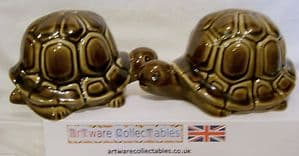 Carlton Ware 'Tortoise' Novelty Cruet Set  - 1970s