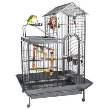 Caged Bird Health Care & Accessories