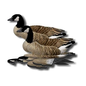 NRA Lesser Canada Geese Decoy