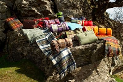 Picnic Rugs and Picnic Blankets