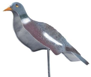 Pigeon Shell Decoy