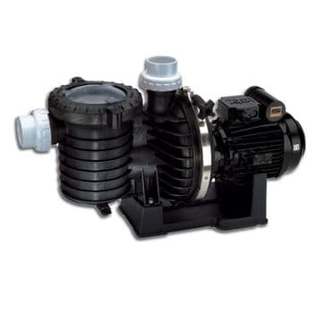 Sta-Rite 5P6R Commercial Single Phase Pump - 2 HP