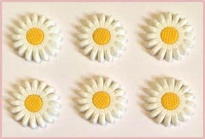 6 x White Daisy Charms